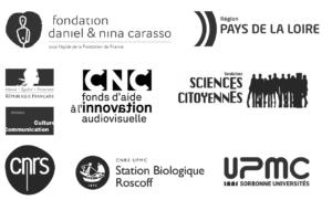 logos_parteners